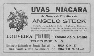 Os imigrantes tiroleses foram pioneiros na produção de vinho no interior paulista.